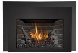 Napoleon Direct Vent Gas Insert with Remote Natural Gas Infr